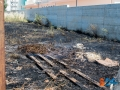 incendio via padre kolbe-5