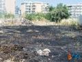 incendio via padre kolbe-6