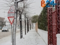 Neve-10