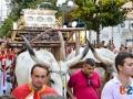 Processione santi carro buoi-18