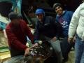 recupero record tartarughe marine 1