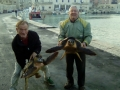 recupero record tartarughe marine 4