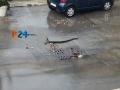 disagi_pioggia_6.jpg