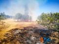Incendio strada del carro_via cecchia corato