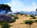 Incendio strada del carro_via cecchia corato_10