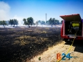 Incendio strada del carro_via cecchia corato_11