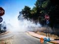 Incendio strada del carro_via cecchia corato_12