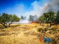 Incendio strada del carro_via cecchia corato_2