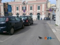 piazza Margherita
