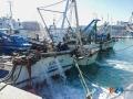 Peschereccio imbarca acqua-3