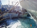 Peschereccio imbarca acqua-4