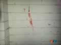 Pinuccio stazione sangue9