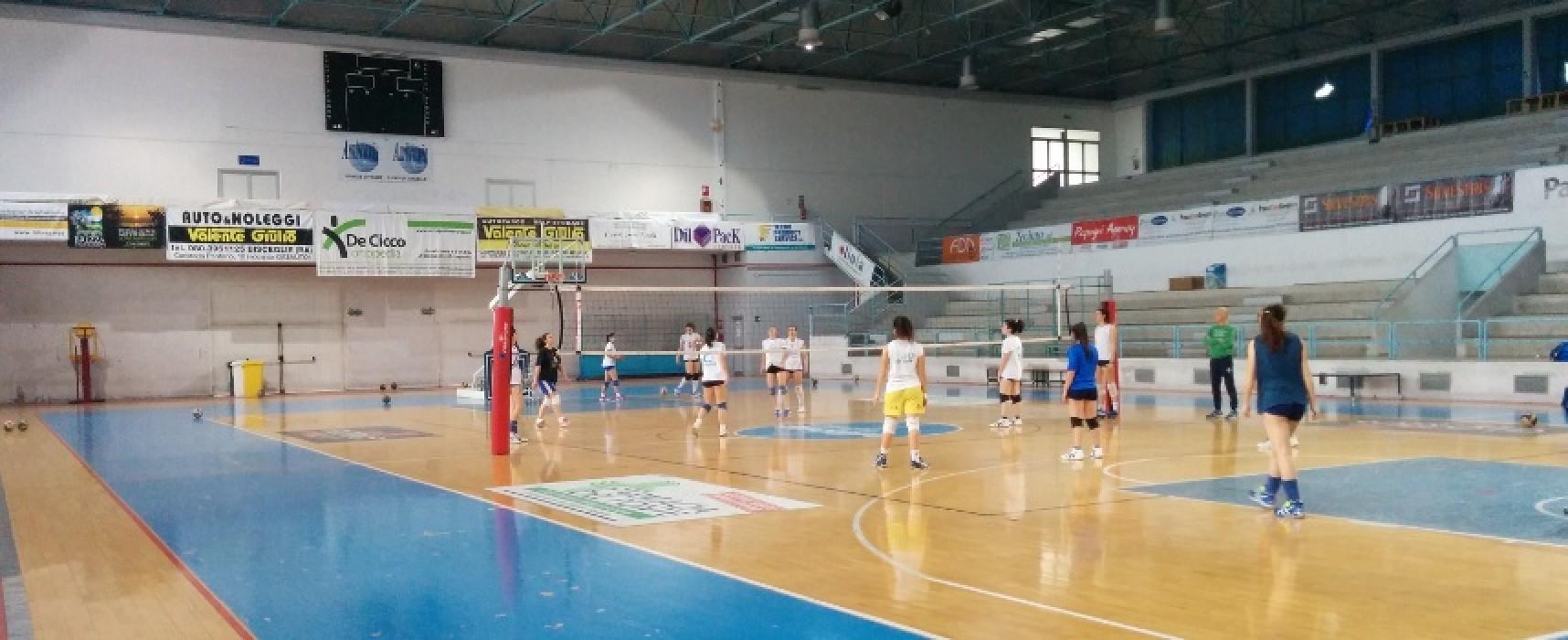 Sportilia Volley, coach Nuzzi presenta la sfida play-out con Oria