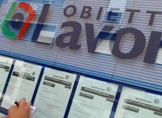 Centro per l'Impiego, rinnovo dichiarazione di immediata disponibilità entro il 31 dicembre 2014