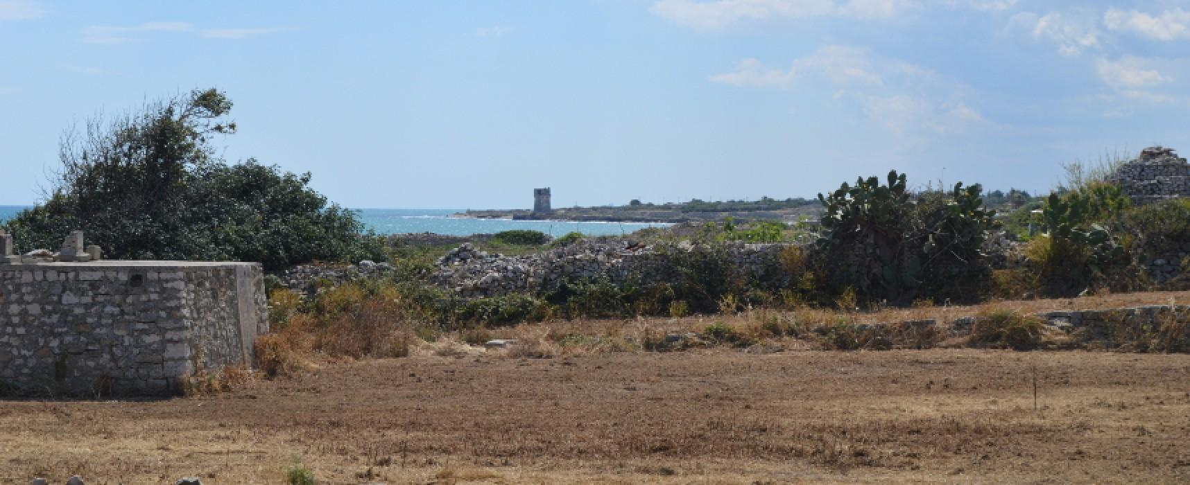 Torre Calderina sarà zona marina protetta, arrivato stamane l'ok dal Ministero dell'Ambiente