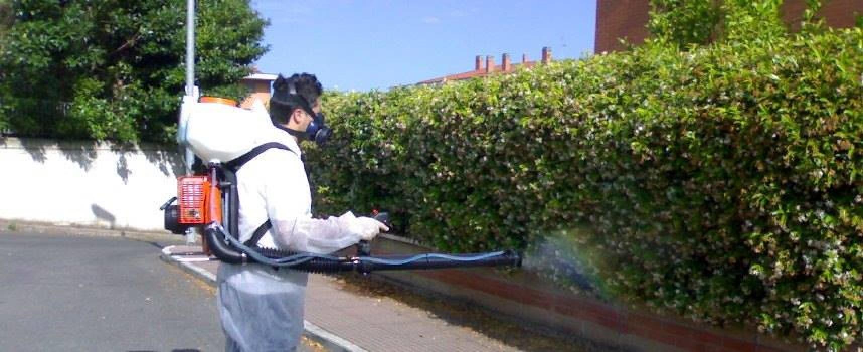 Interventi di disinfestazione contro ratti e blatte da oggi a venerdì 19 ottobre