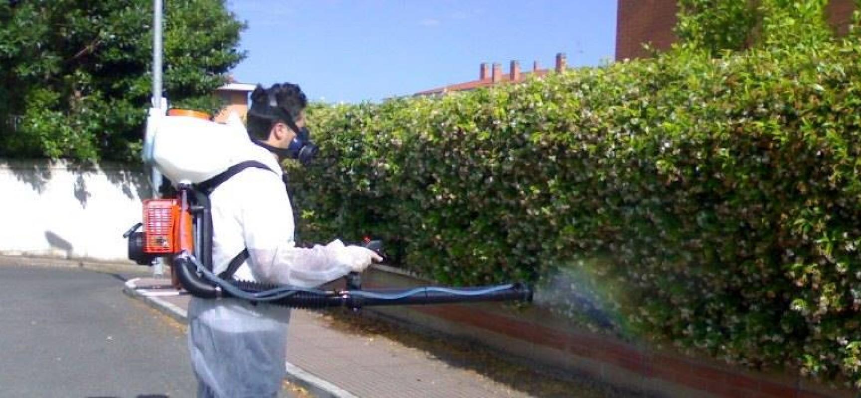 Nuovo intervento di disinfestazione contro mosche e zanzare, tenere chiuse porte e finestre