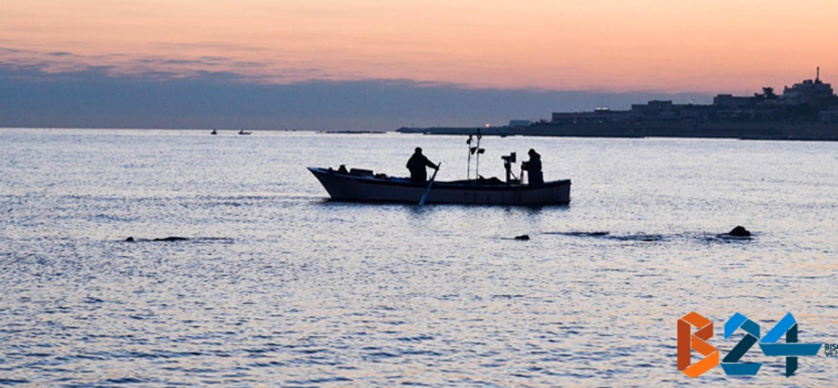 Crisi della pesca, Amministrazione comunale incontra operatori biscegliesi del settore