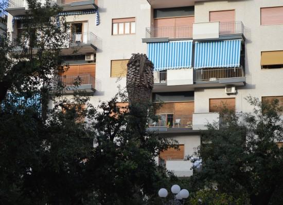 Manutenzione straordinaria di alcune aree verdi della città, stanziati 35.000 euro
