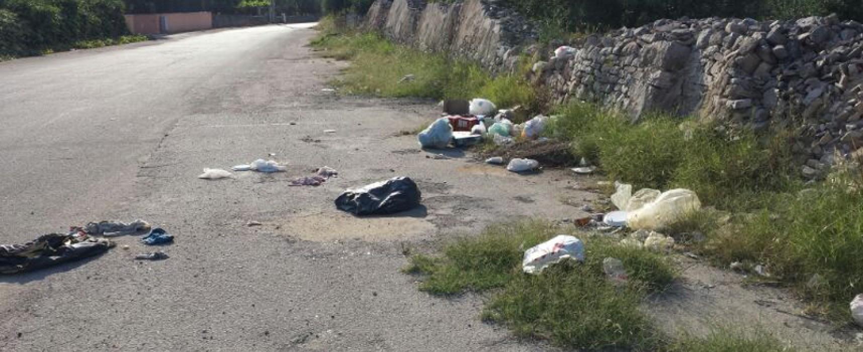 Giano bifronte: da una parte arte e devozione, dall'altra abbandono e spazzatura / FOTO