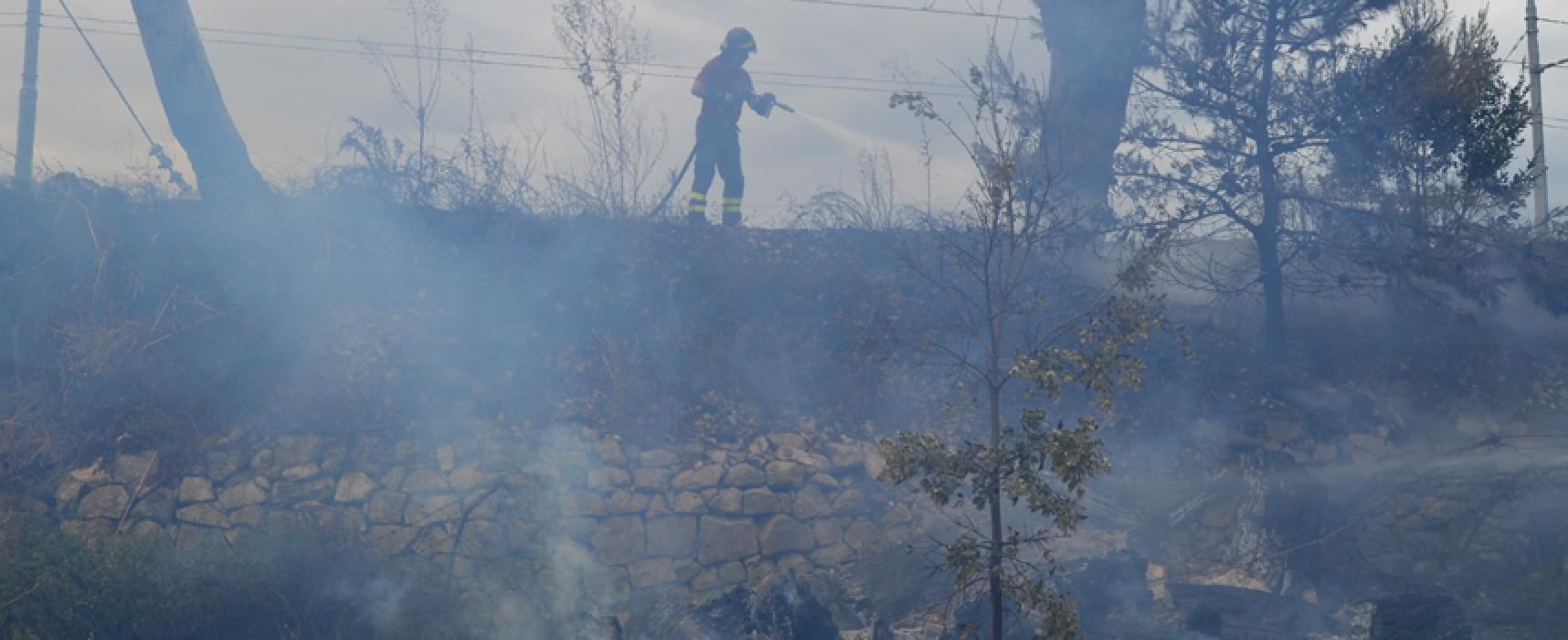 """Incendio stamane in contrada """"Limongella"""" lungo i binari / VIDEO"""