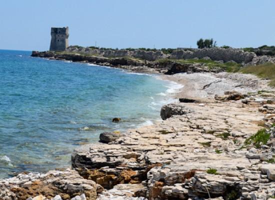 Torre Calderina, no del M5S alla condotta sottomarina: ecco la proposta