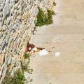 """Spiaggia """"La Testa"""", la rampa d'accesso trasformata in un bagno pubblico / FOTO"""