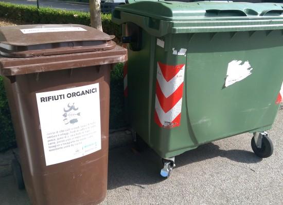 Conferimento dei rifiuti organici temporaneamente affidato alla Bio EcoAgrim s.r.l.