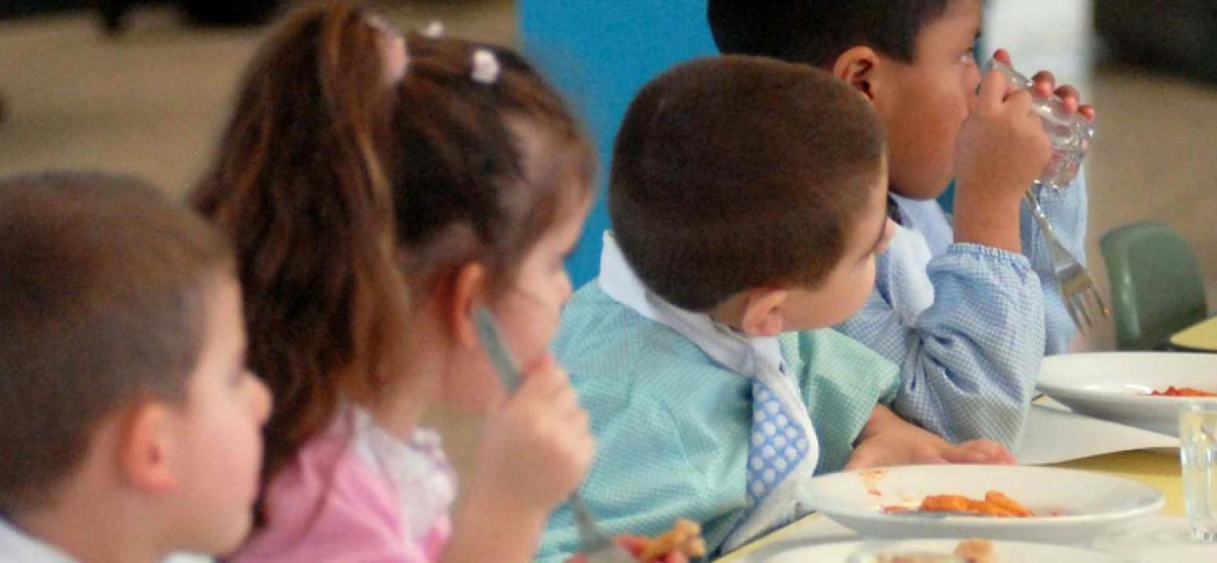 Riparte il servizio refezione nelle scuole biscegliesi