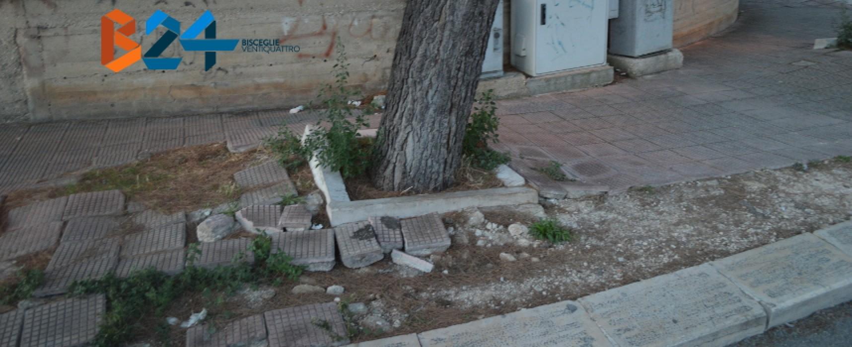 Via degli Artigiani e Cala dell'Arciprete: marciapiedi e manto stradale come montagne russe / FOTO