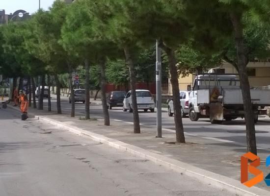 Manto stradale via degli Artigiani e Cala dell'Arciprete, interventi di manutenzione / FOTO