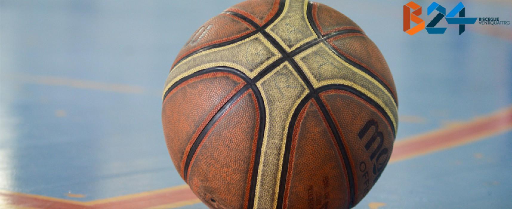 Serie B, definite le avversarie dei Lions Basket Bisceglie