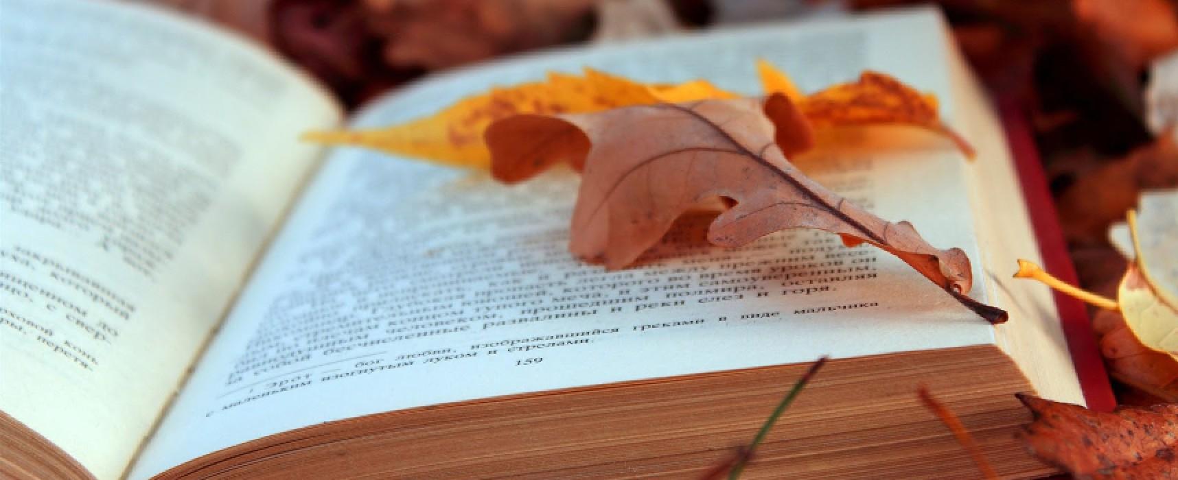 """""""Autumn in Blues"""", autunno, libri e degustazioni: l'affascinante ricetta di """"Made in Blu"""" / PROGRAMMA"""