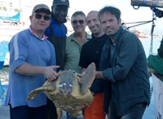 Due pescatori biscegliesi salvano la vita ad una tartaruga marina