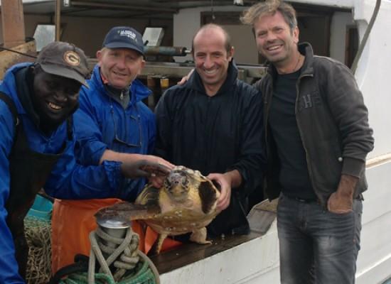 """L'equipaggio della """"Nuova Giovanna"""" salva un'altra tartaruga marina"""