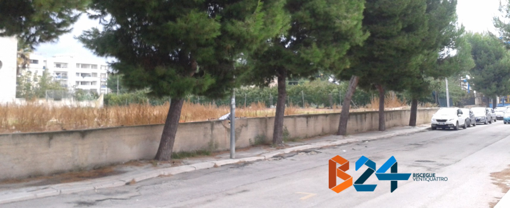 Via G. Veneziano: tratto di strada abbandonato a se stesso, tra buche e marciapiedi rotti / FOTO