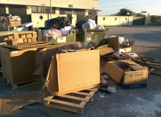 Zona artigianale ovest ripulita giovedi e di nuovo sommersa dai rifiuti sabato