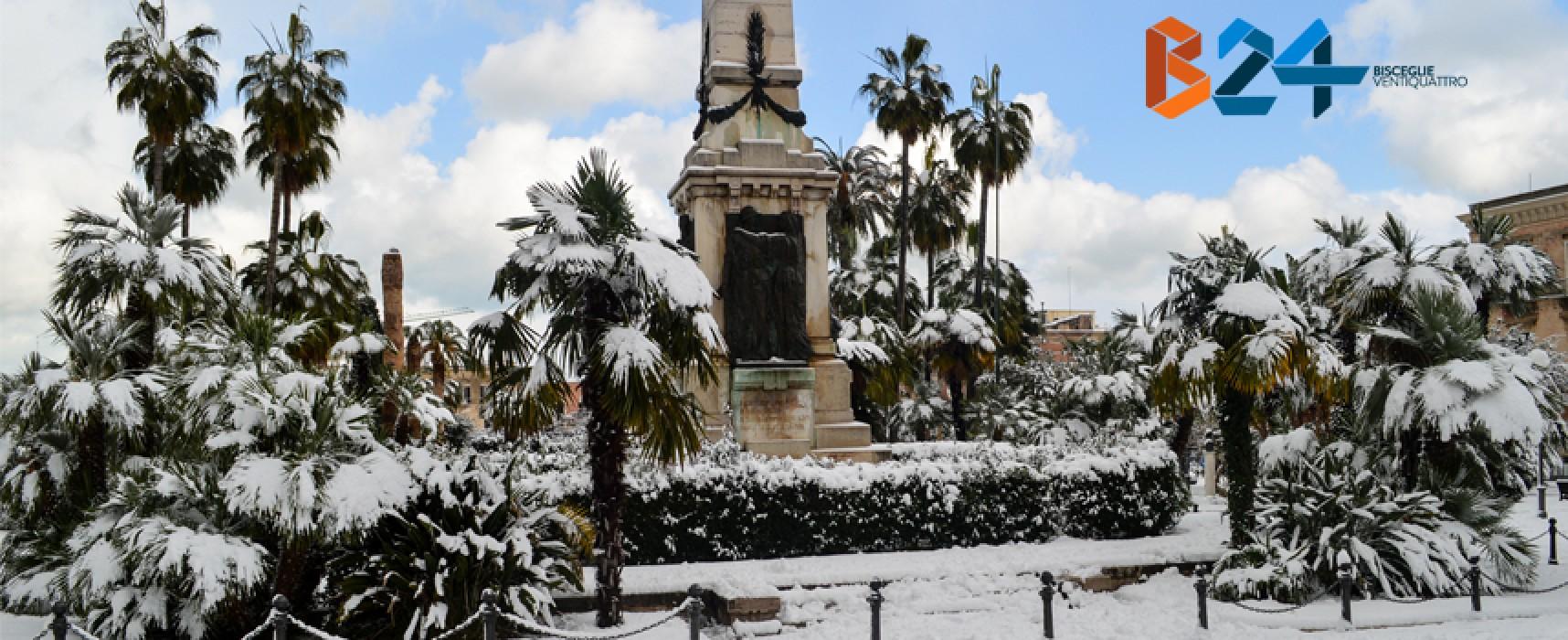 Bisceglie ricoperta di neve, la fotogallery di Bisceglie24 /FOTO