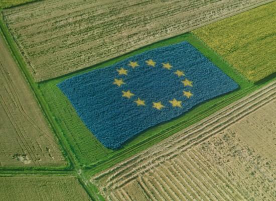 Novità normative nel mondo agricolo, incontro di approfondimento venerdi 12 a Bisceglie