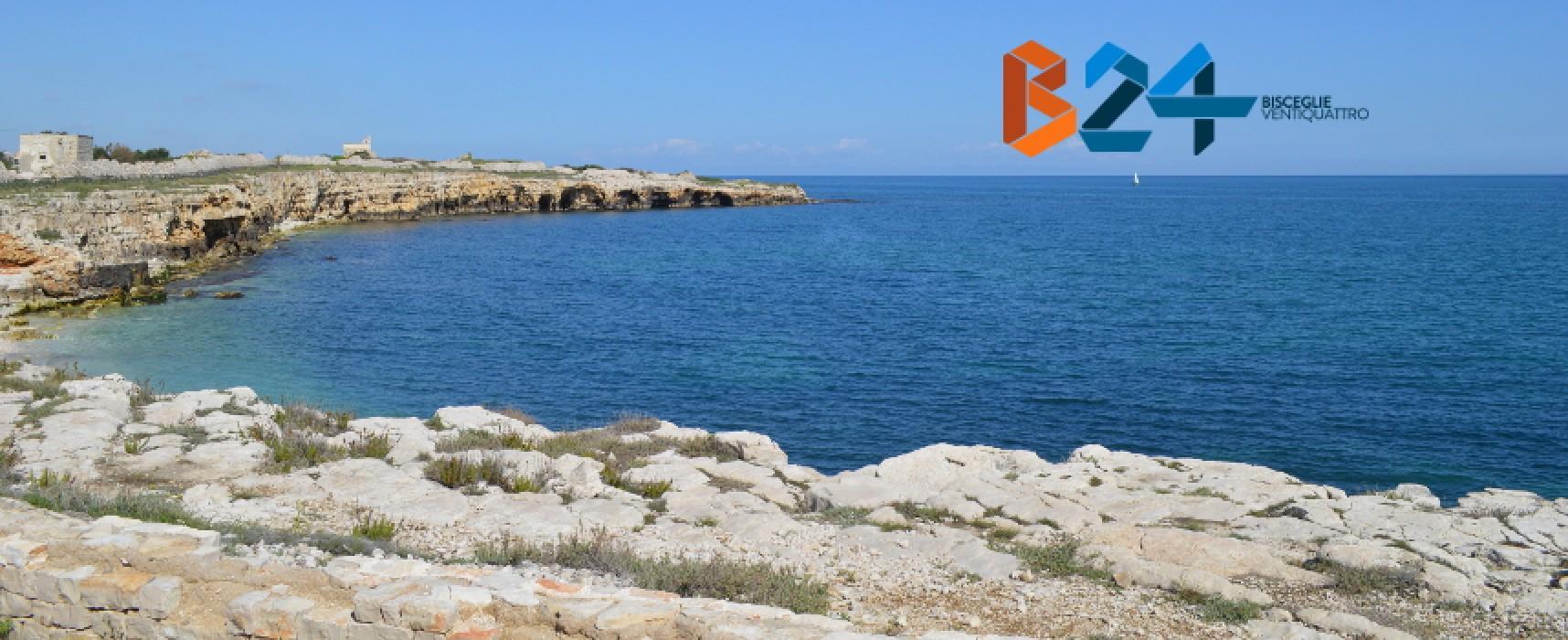 """Pro Natura: """"Fondi Piano di Azione siano destinati a miglioramento della zona Pantano-Ripalta"""""""