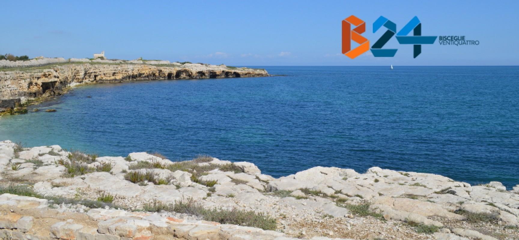 Numero verde Regione Puglia e WWF per la segnalazione dei reati ambientali mare e coste