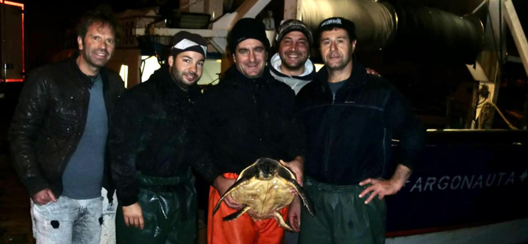 """Il motopesca """"Argonauta"""" fa il bis, altre due tartarughe marine salvate"""