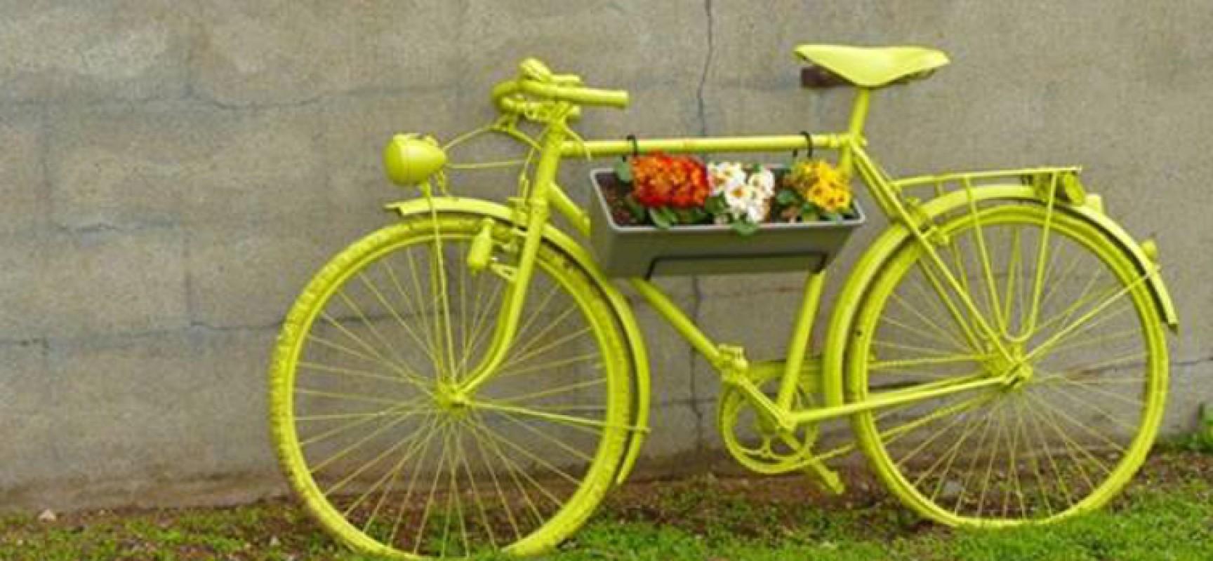 """Domenica 14 dicembre """"Biciclette verde olive"""", il ciclotour di Biciliae FIAB con degustazione"""