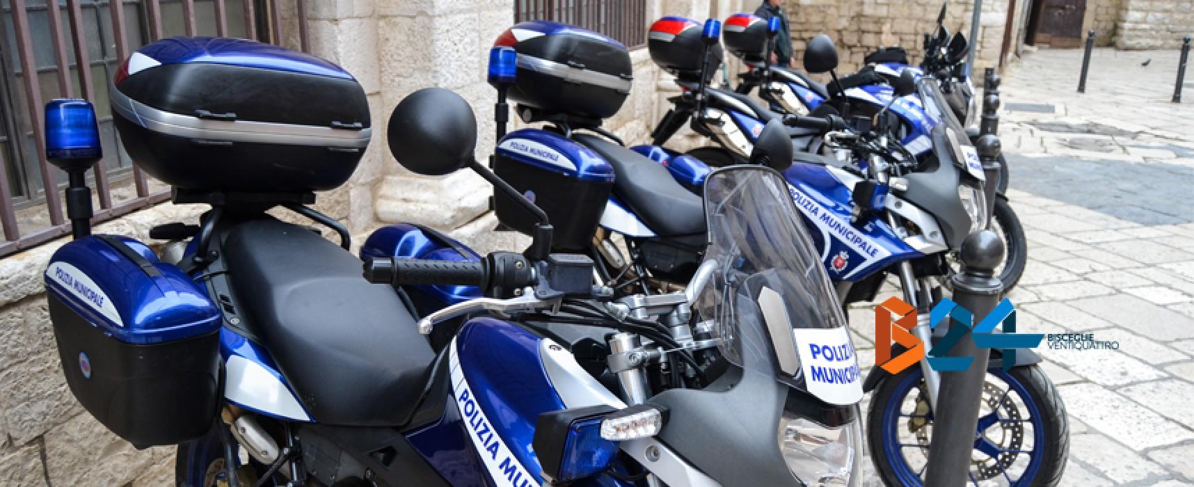 Ruba il portafogli ad una signora: algerino arrestato da polizia municipale e carabinieri