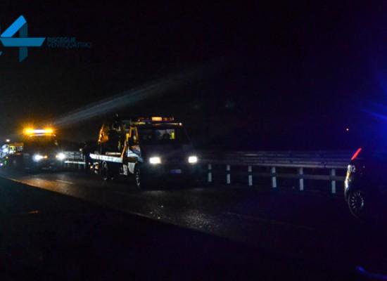 Incidente ieri sera sulla 16bis tra Bisceglie Sud e Lama di Macina, nessun ferito grave