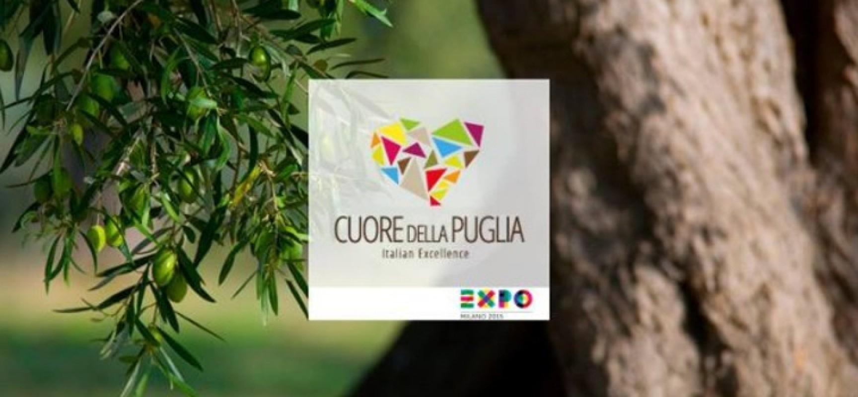 """Il Comune di Bisceglie si unisce a """"Cuore della Puglia"""" e promuove il concorso di cortometraggi in vista di Expo 2015"""