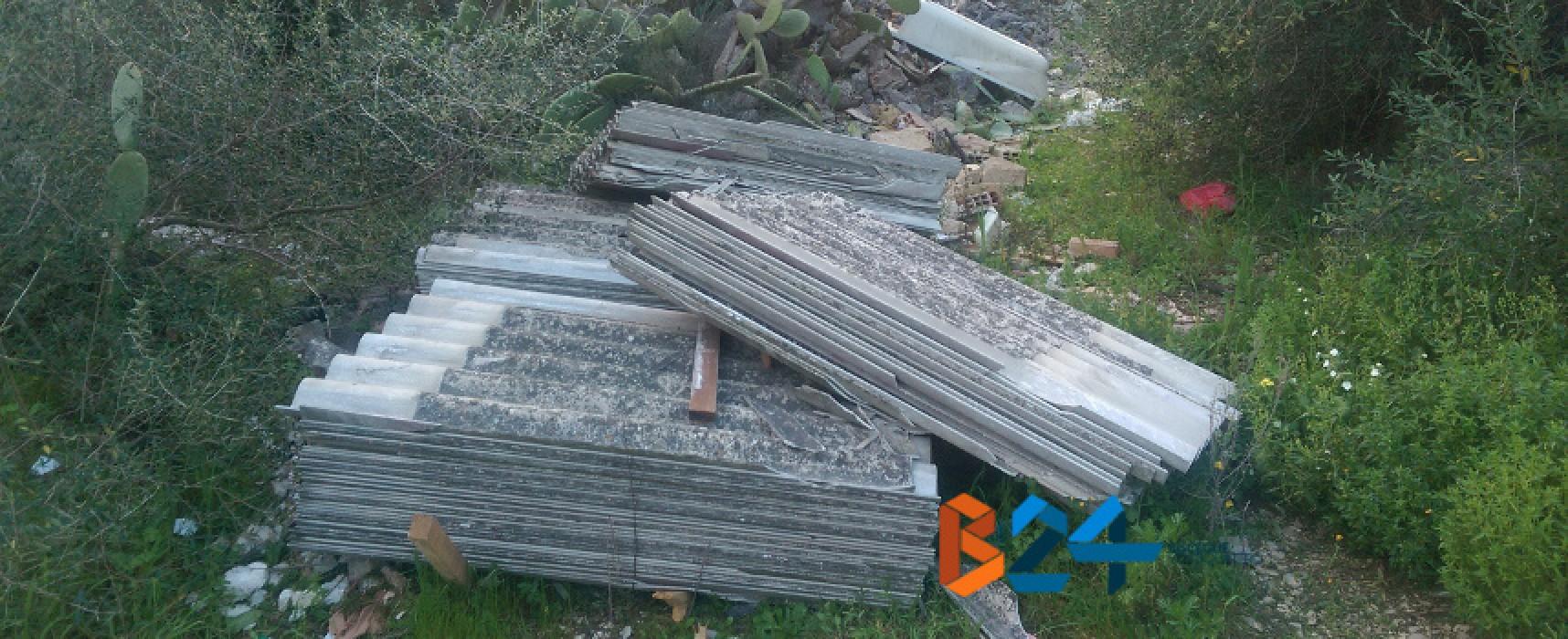 Tre bancali pieni di lastre di eternit abbandonati in zona Lama Paterna / FOTO