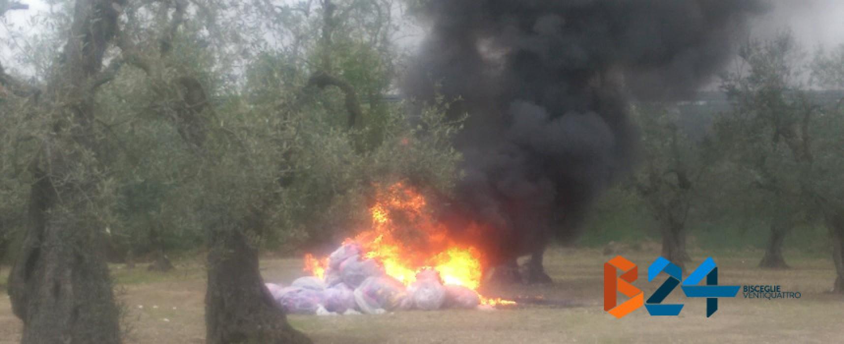 Dato alle fiamme il cumulo di rifiuti presente da settimane nell'uliveto di Strada del Carro
