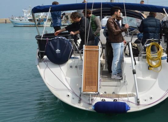 Il centro recupero tartarughe marine di Molfetta libera cinque nuovi esemplari di caretta caretta / FOTO
