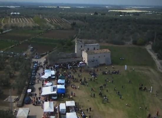Zappino e l'agro dall'alto: ecco il secondo spettacolare VIDEO di Mino Pedone